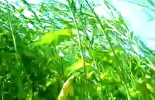 मॉर्मनबॉयज़-सीधे किशोर और बड़े सेक्सी मूवी हिंदी में वीडियो आदमी द्वारा